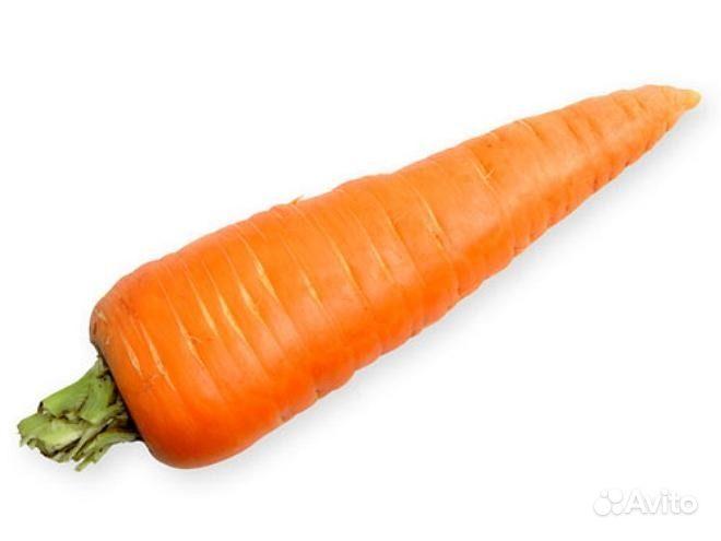 Морковку жуют через Ниблер