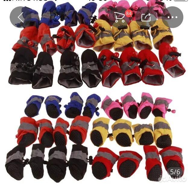 Обувь для собак в Нягани - фотография № 2