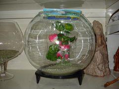 Аквариум стеклянный круглый
