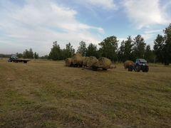 Продам сено в рулонах 2018 года