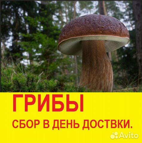 Принимаю грибы