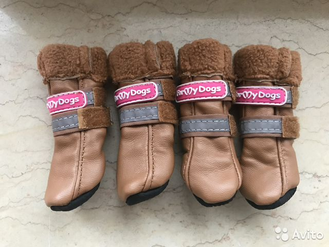 Обувь для собак (новая) 89219981571 купить 1