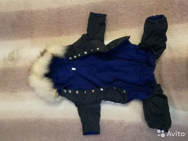 Одежда для собак 89807241402 купить 3