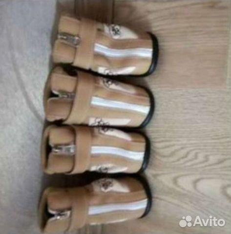 Обувь на среднюю породу собак новая  89511055408 купить 1