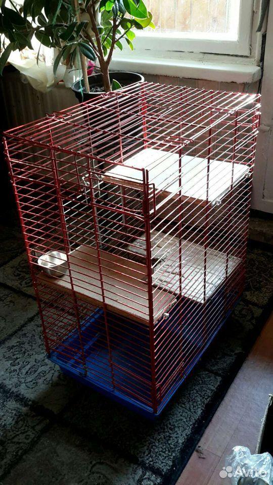 Клетка для грызунов  89633218399 купить 4