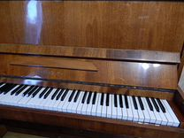 Ищу настройщика фортепиано — Музыкальные инструменты в Геленджике